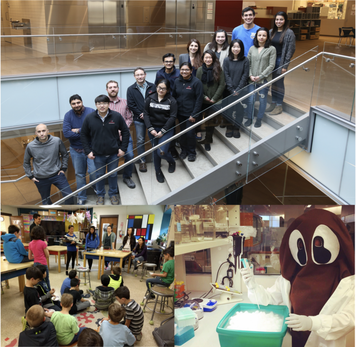 Top, members of the Newmark lab. Bottom left, members of the lab at a local elementary school talking about planarians. Bottom right, lab mascot, Schmidty, aliquoting cells.
